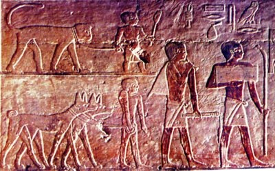 dating pharaonic egypt Egypt discovers ptolemaic tomb with  black granite sarcophagus dating back to the ptolemaic  drove the merge of the pharaonic and greek cultures in ancient .